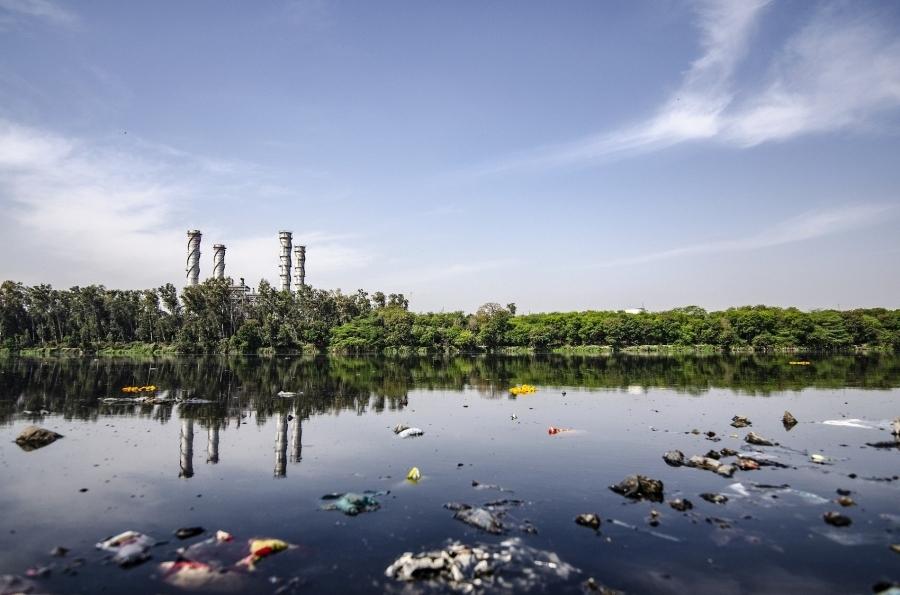 Premian a investigadores del ceiA3 por un proyecto de investigación sobre residuos acuáticos y economía circular