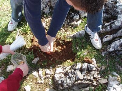 Investigadores de ceiA3 toman muestras en el suelo