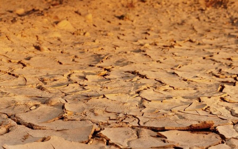 Investigadores del ceiA3 en la Universidad de Córdoba publican en la revista Nature nuevas pruebas sobre los efectos del cambio climático